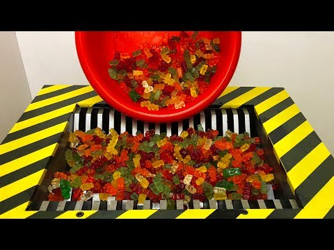 Experiment Shredding 2000 GUMMY BEAR