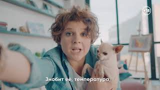Ветеринар онлайн. 18+