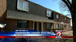 Townhouse loaded with mold; family told to leave immediately