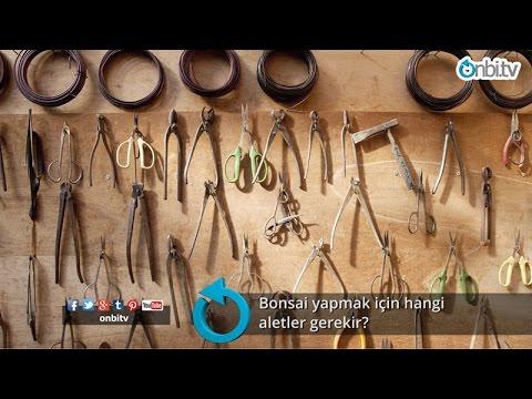 Bonsai yapmak için hangi aletler gerekir?