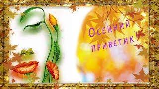 Осенний, октябрьский привет!
