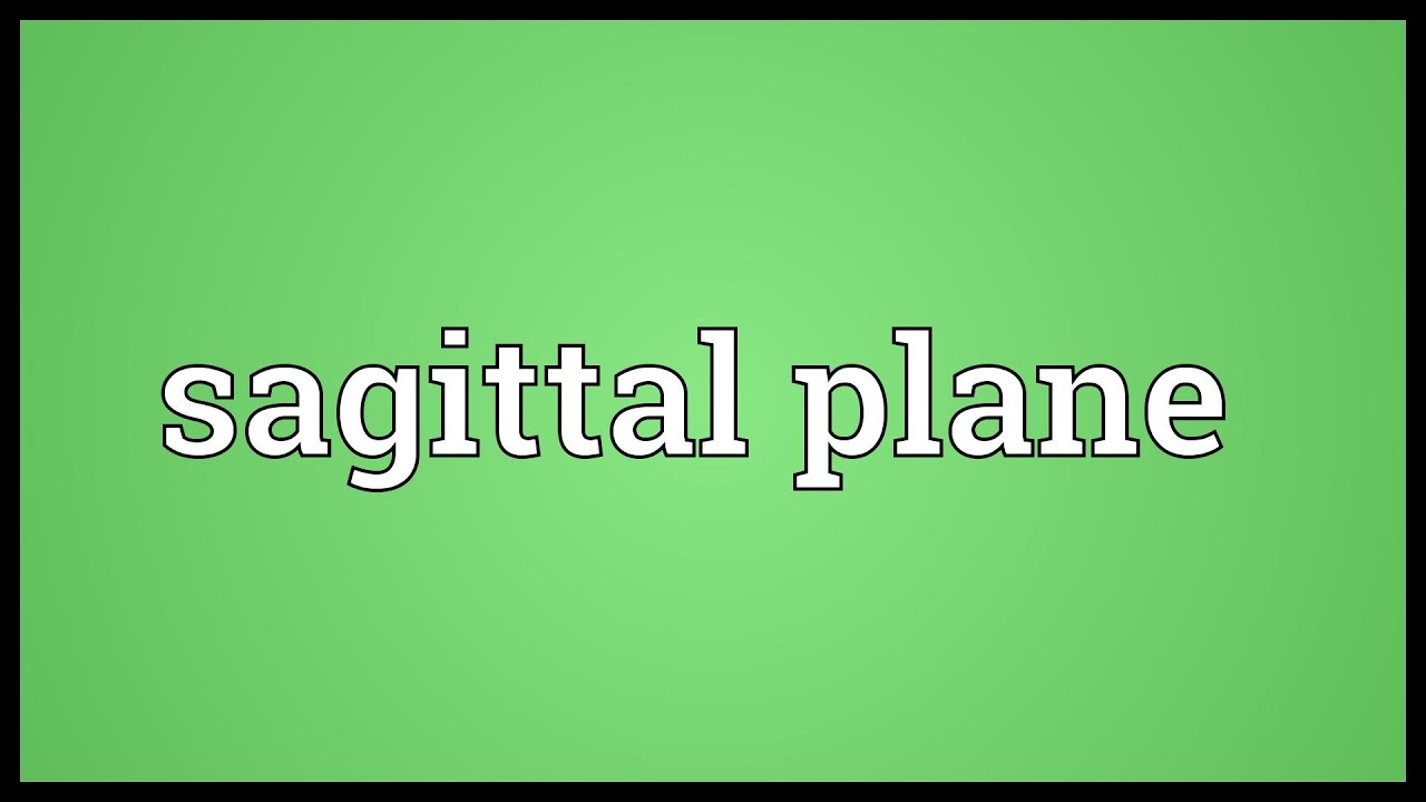 Sagittal plane Meaning - YouTube