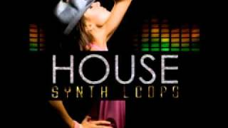 Roqstar  music samples - house synth loops