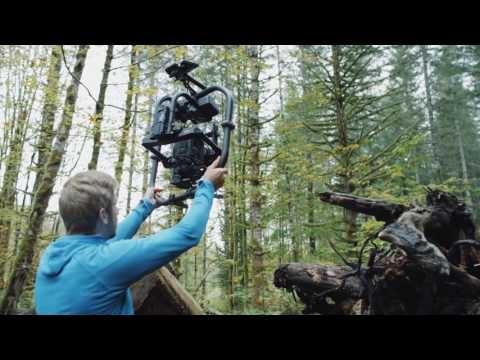 Introducing The Movi Pro