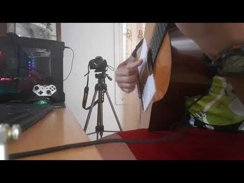 Faudel & Mohammed Assaf - Rani ( Guitar )