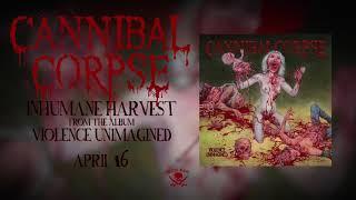 Play Inhumane Harvest