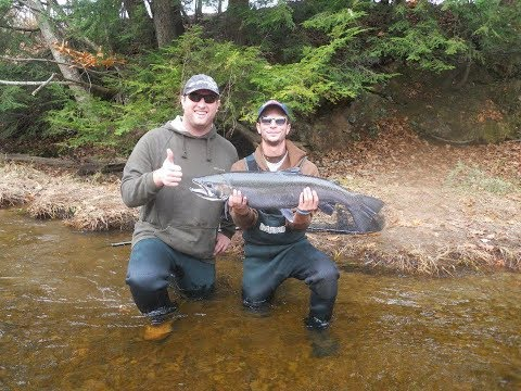 Tips To Catch More And Bigger Fish On The Salmon River