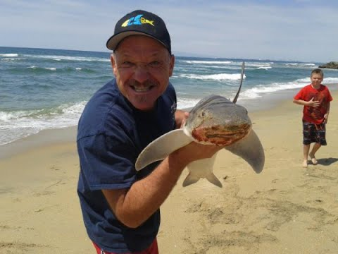 Southern california surf fishing learn how to surf fish for Fishing beaches near me