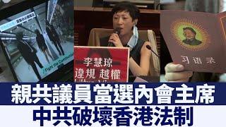 摒除民主派 親共議員當選內會主席|新唐人亞太電視|20200524