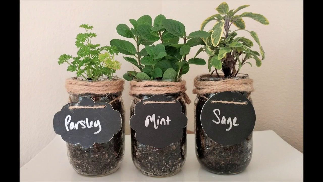 Diy Craft How To Make A Mason Jar Indoor Herb Garden Youtube