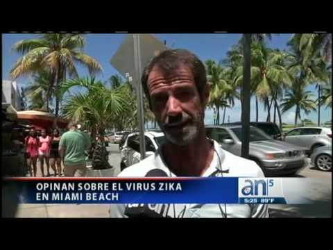 Identifican área de transmisión del virus Zika en Miami Beach - América TeVé