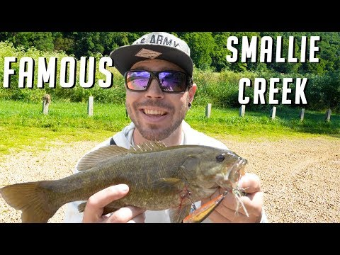 Fishing The Most FAMOUS Smallmouth Creek On The Internet - Illinois Creek Smallies