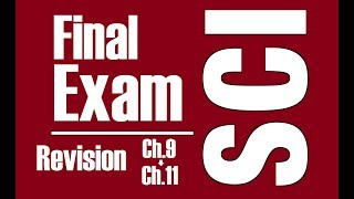 [F.2 Science] 1718 Final Exam Revision - Ch. 9-11