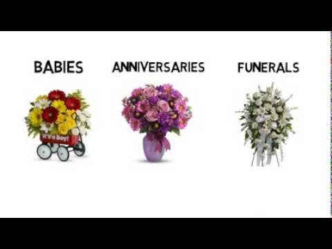 Same Day Flower Delivery Aurora CO