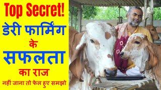 गिर गाय का डेरी फार्मिग कैसे सफल बनाए | Sucussesful Gir Cow Dairy Farming