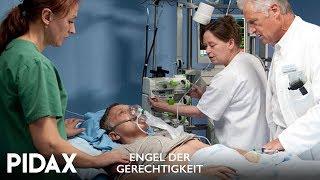 Pidax - Engel der Gerechtigkeit (2011-2015, TV-Reihe)