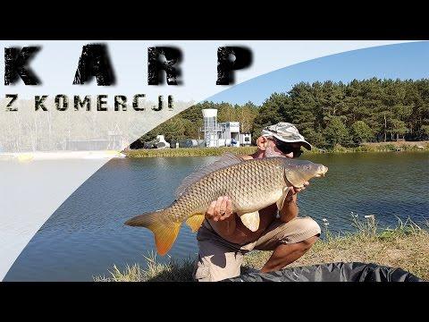 Wędkarstwo karpiowe DAM MAD FCR TELE 360 CM 3,00 LBS hol karpia - Łowisko Prądki