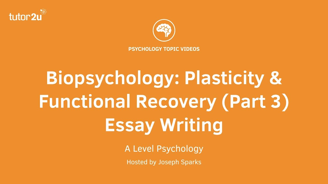 Revision Webinar Biopsychology  Plasticity  Functional Recovery  Revision Webinar Biopsychology  Plasticity  Functional Recovery Part  Essay  Writing Online Book Report Service Online Book Report Service also Business Plan Writer Manchester  Business Format Essay