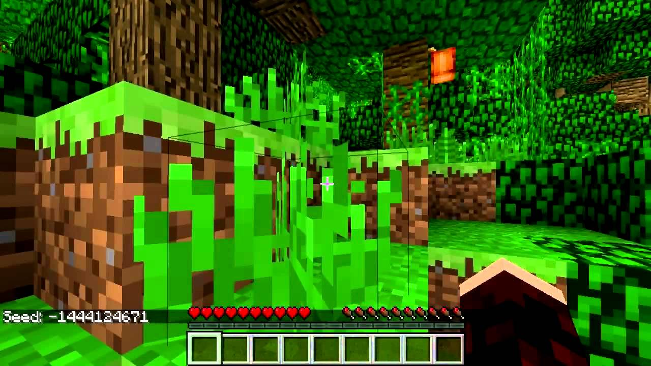 Seed (level generation) – Official Minecraft Wiki