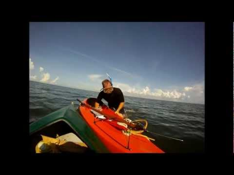 Free Diving Bahaia Reef Tampa Bay.wmv