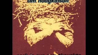 Tim Hodgkinson - Hold to the Zero Burn, Imagine (1993)