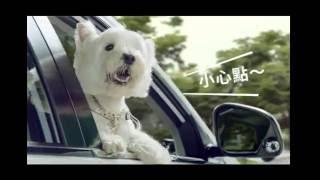 U6 TURBO ECO HYPER電視廣告【散步篇 30秒】