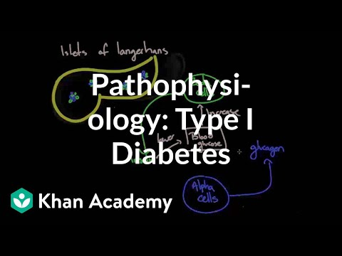Pathophysiology - Type I diabetes | Endocrine system diseases | NCLEX-RN | Khan Academy