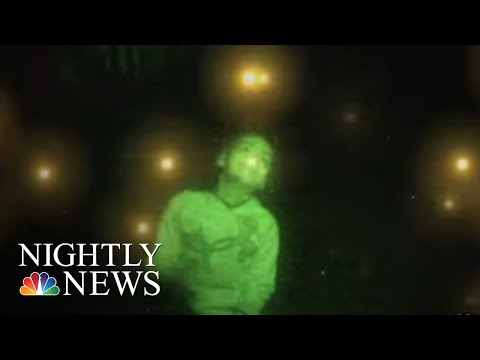 Fireflies Take The Stage In The Great Smoky Mountains | NBC Nightly News
