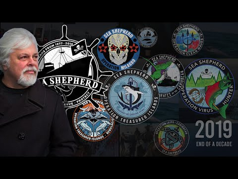Sea Shepherd Conservation Society - 2019 End Of Year Campaign Review