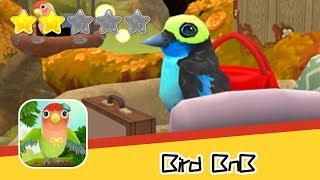 Bird BnB - Runaway - Walkthrough Design your bird home & garden Recommend index two stars