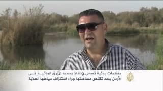 جهود لإنقاذ محمية الماء الأزرق في الأردن