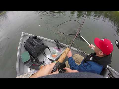 Cowlitz River Chromer On A Nightmare Jig