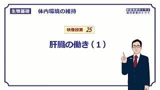 【生物基礎】 体内環境の維持25 肝臓の働き(1) (15分)