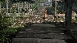 Elder Scrolls Skyrim BETTER QUALITY! (1920x1080)
