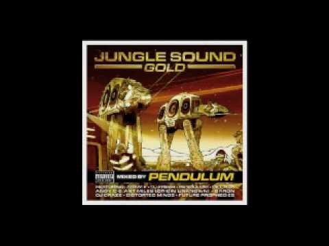 Jungle sound gold mixed by pendulum part 6 7 best part
