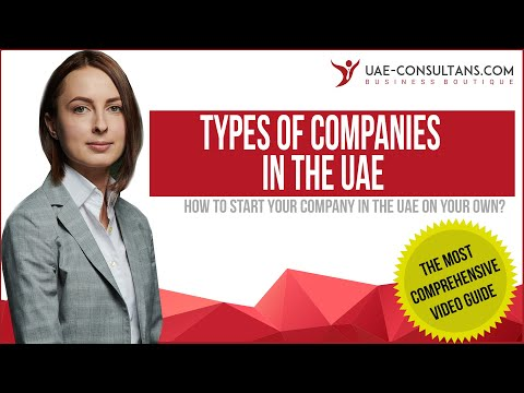 Types Of Companies In The UAE: FZE, LLC, Professional, Sole, Etc.