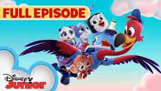 You've Gotta Be Kitten Me  / Whale, Hello There  | Full Episode | T.O.T.S. | Disney Junior