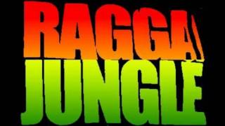 Michael Rose & Shabba Ranks - Shine Eye Gal (Ragga Dnb Remix)