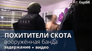 Силовики задержали похитителей скота с оружием
