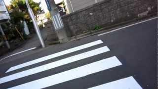 秋田市内路上テロ―横断歩道を渡りたい人に対する暴力(71)