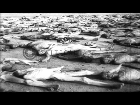 British Members of Parliament visit German concentration camps and witness atroci...HD Stock Footage