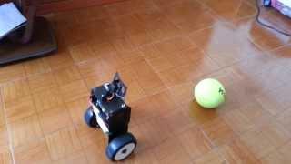 Raspberry Pi camera module openCV object tracking and following self balancing robot