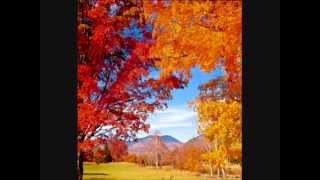Joe Dassin-Septemberwind (L