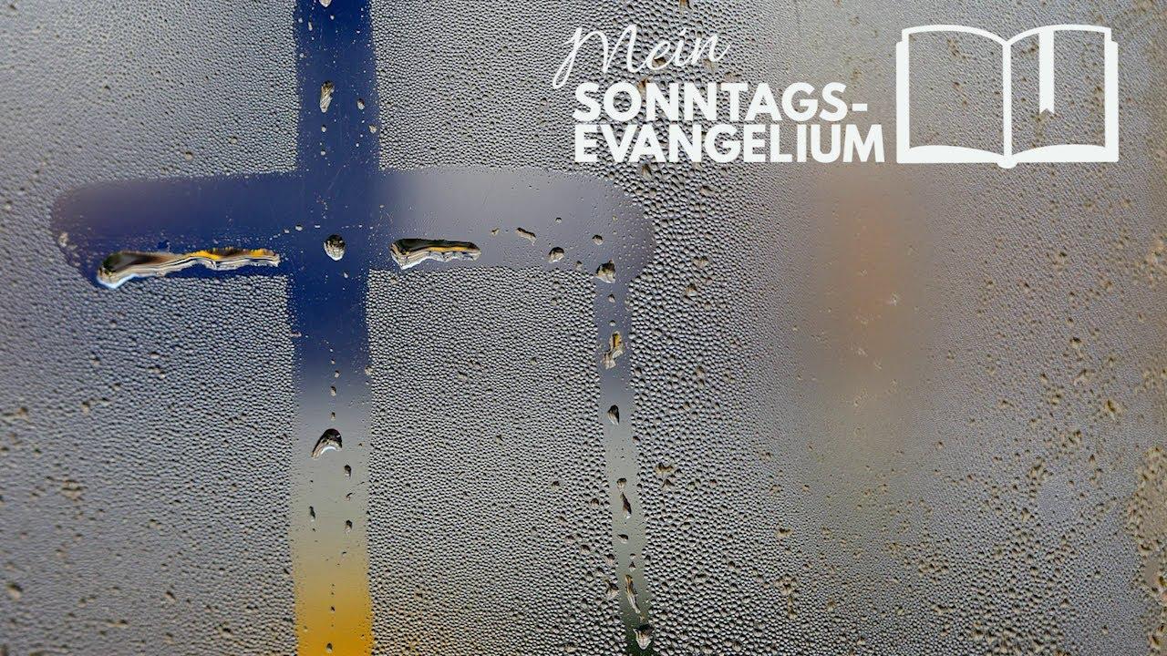 Mein Sonntagsevangelium: Anvertraut sein