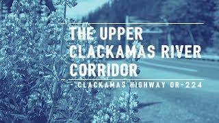 Explore the Upper Clackamas River Corridor in Clackamas County