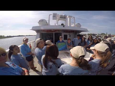 CDC Wildlife Survey on Maritime Aquarium Research Vessel