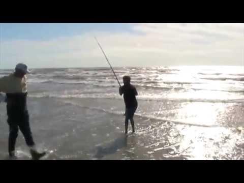 Real time texas fishing video october 25 2009 bull shark for Fishing report surfside tx