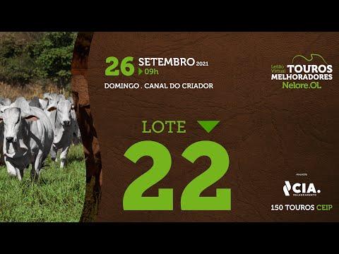 LOTE 22 - LEILÃO VIRTUAL DE TOUROS 2021 NELORE OL - CEIP