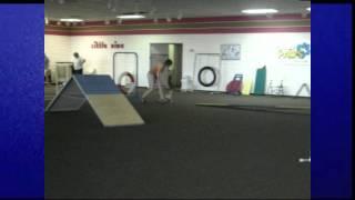 Villa La Paws Canine Training Academy's Agility For Fun Class Graduation - 06-27-2011