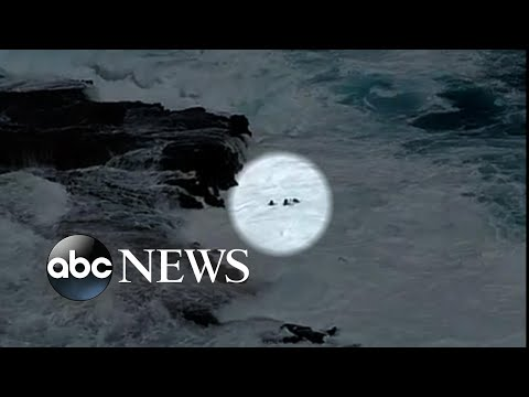 Couple swept off rocks into ocean in Hawaii
